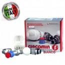 Set robineti GIACOMINI tur/retur si cap termostatat 1/2 colt